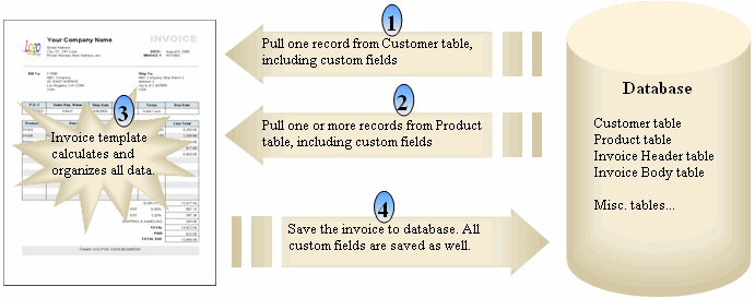 How custom fields work
